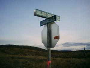 Corner of Loon and Dillard