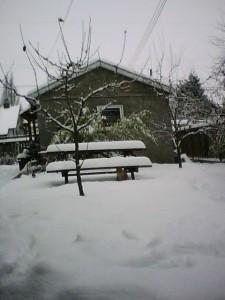 Vancouver backyard snow