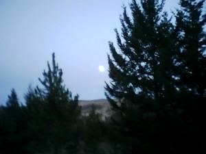 Monkey Valley moon