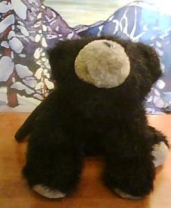 Graham bear
