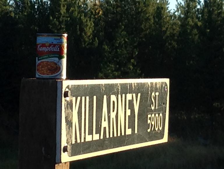 13-Killarney St